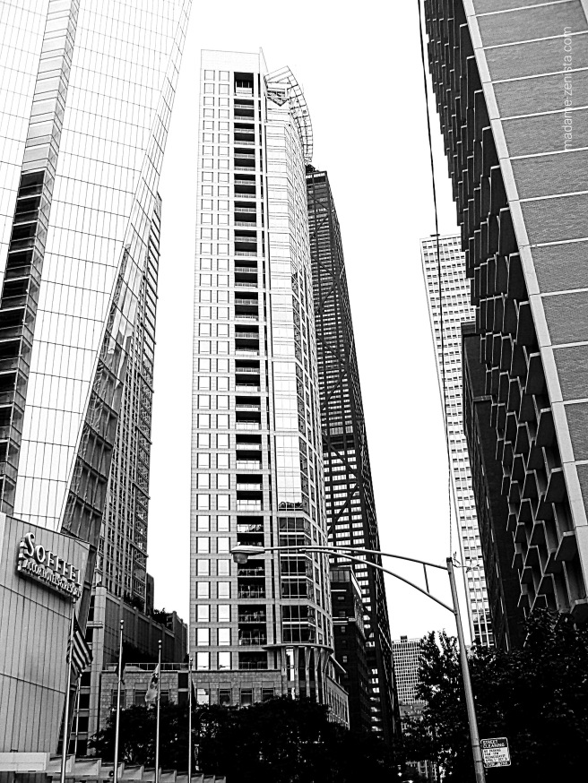 Chicago Skyline, black and white photography, city, monochrome, madame-zenista.com
